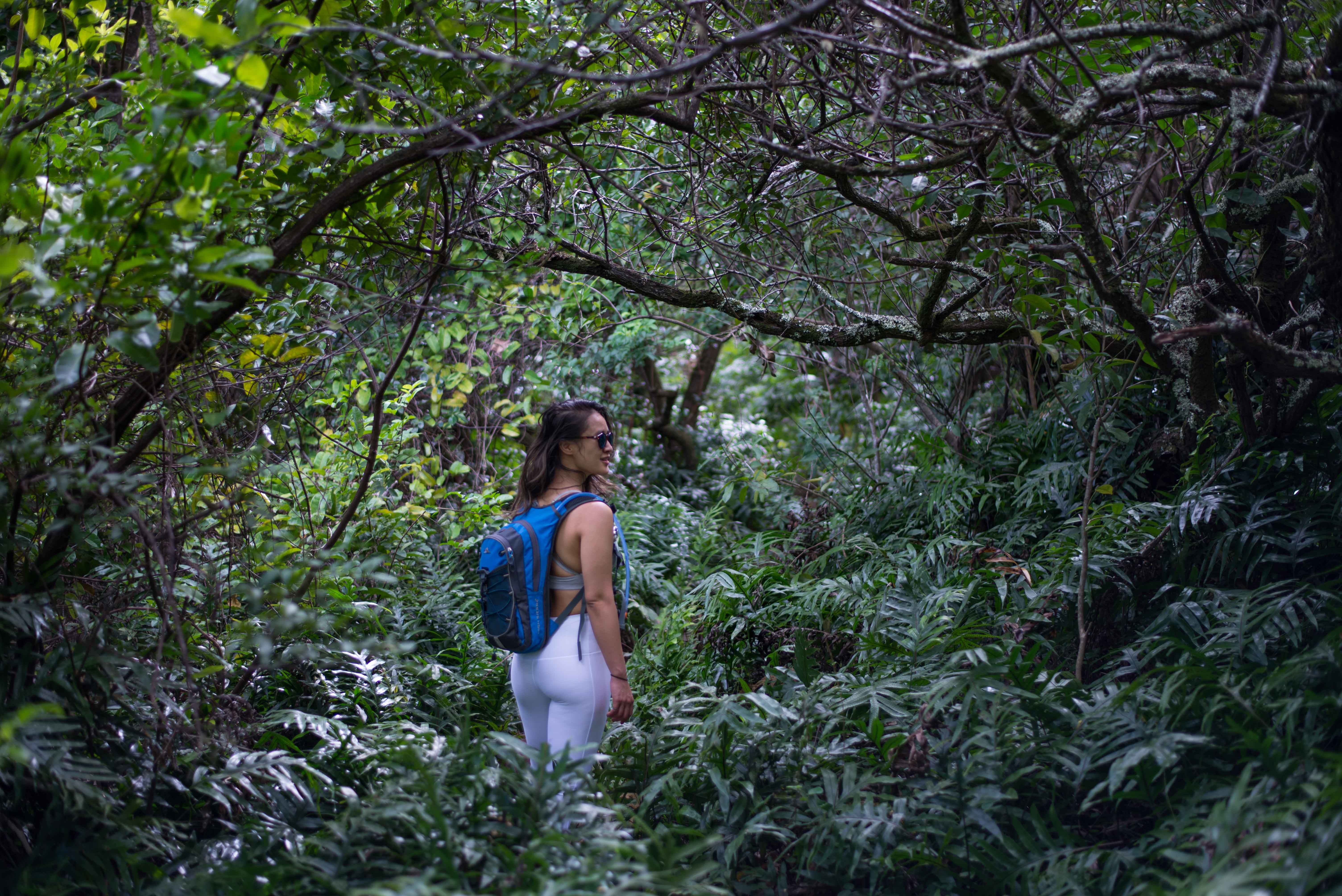 Hikes on Oahu, Hawaii: Olomana Hike - Tropical Jungle